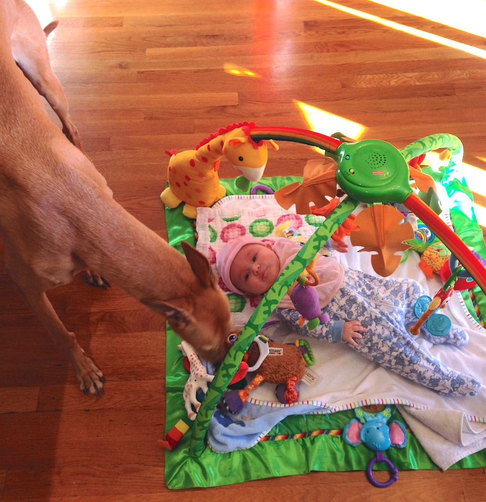 Babywoods and Frugal Hound love the play mat