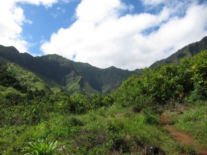 Kalalau Trail in Kauai, HI