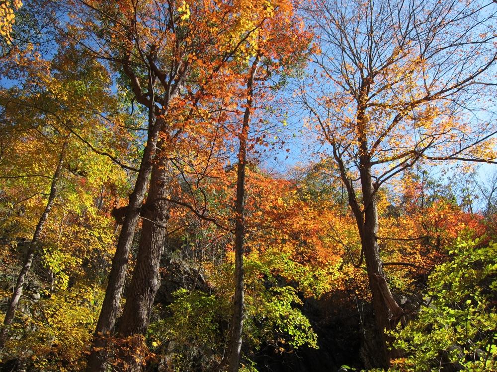 Little Devil Stairs in autumn