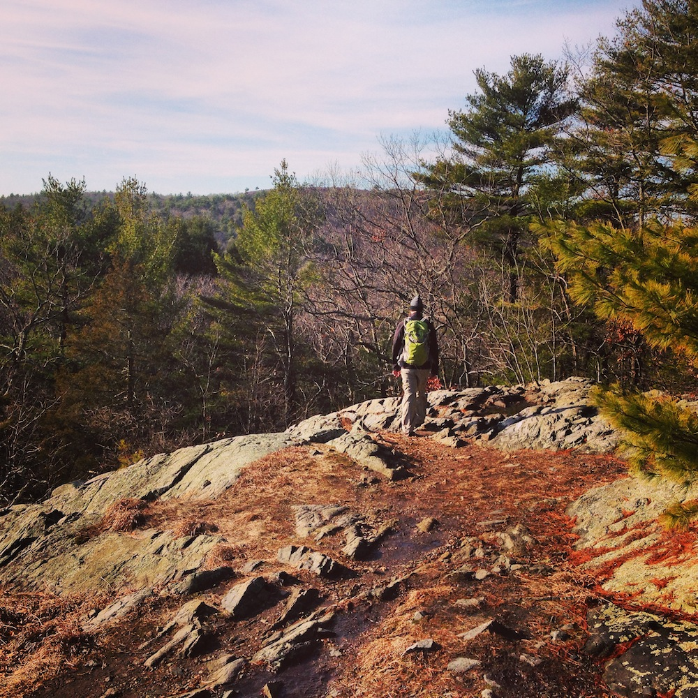 True low down: we went hiking in the Blue HIlls