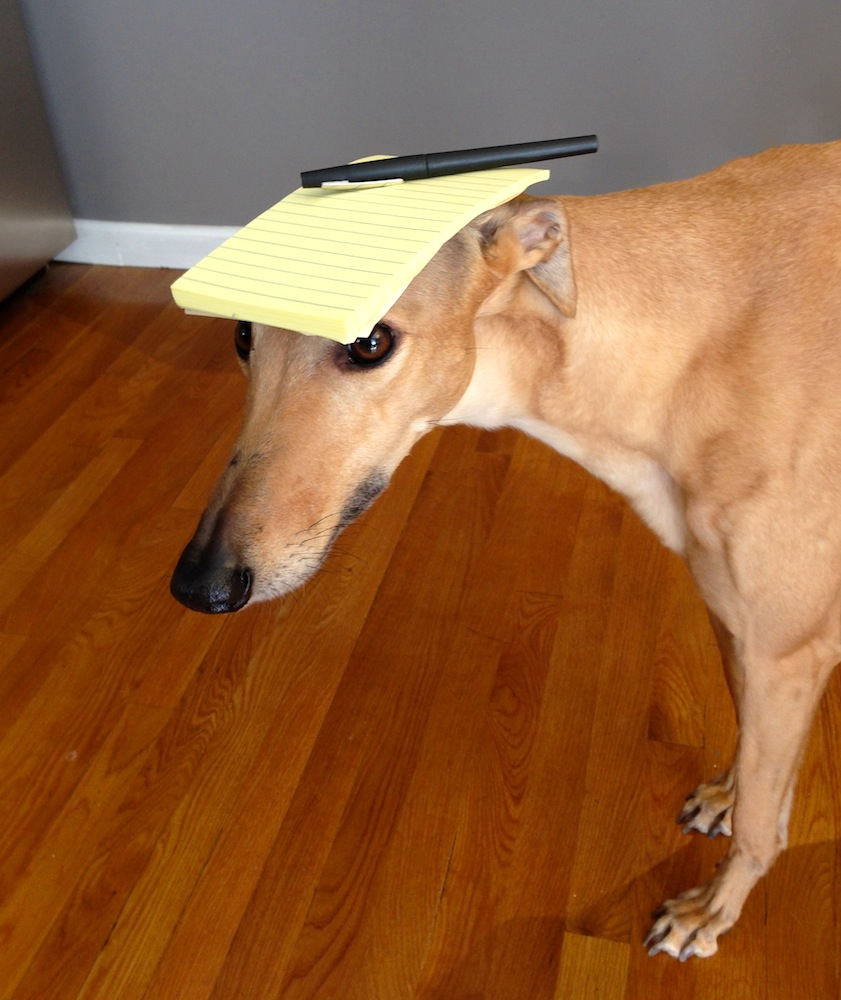 Frugal Hound here to help you track your spending