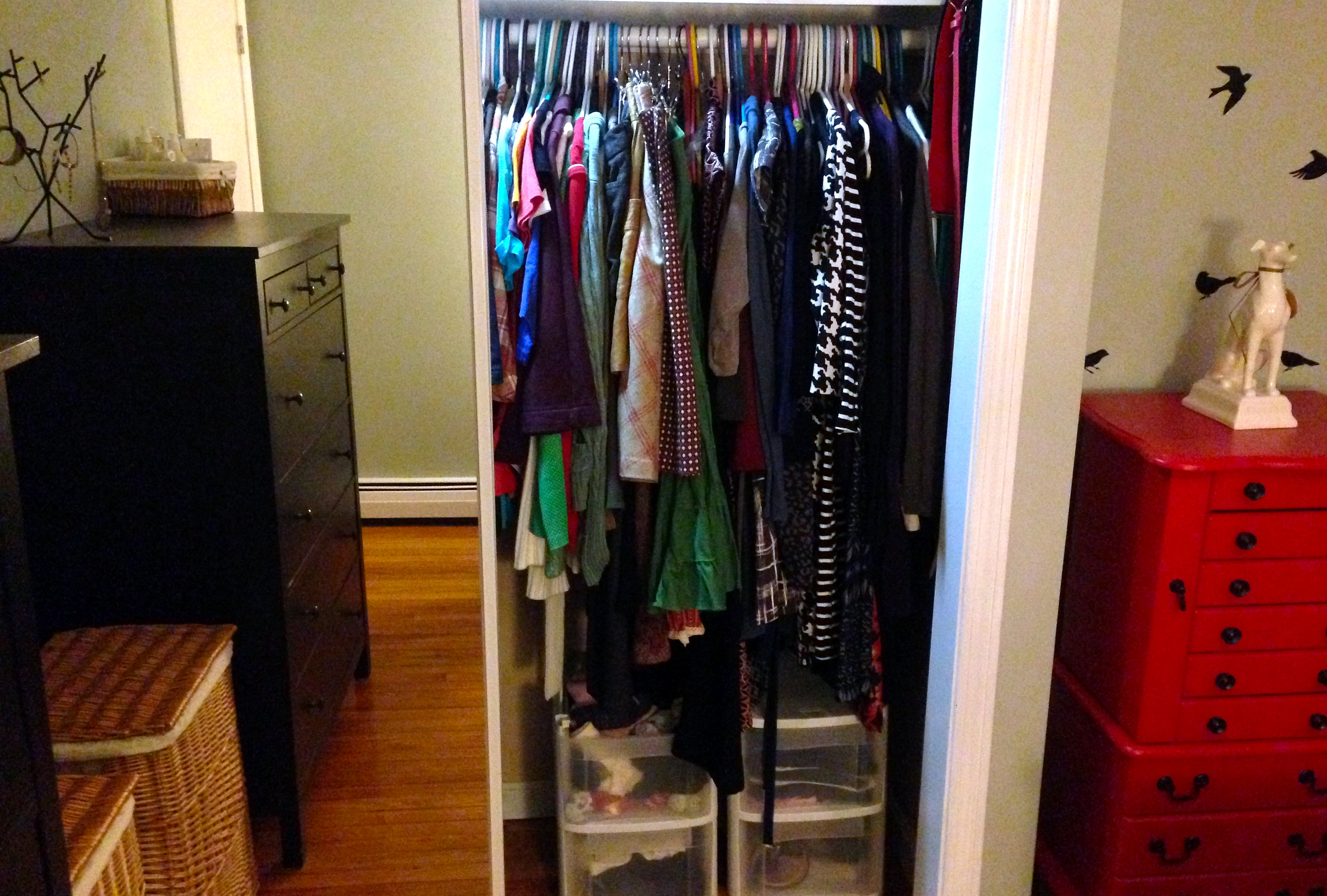 Our (now) organized closet