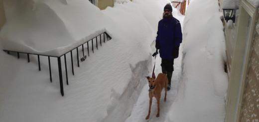SnowUpdate_Cover