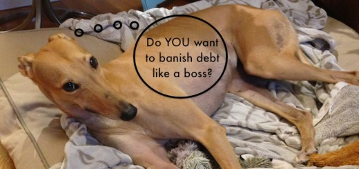 Frugal Hound: a fan of debt repayment