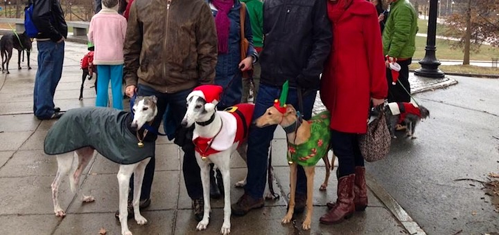 Mr. FW and me (on right) with hound and human friends. Best part is that this photo was taken by another wonderful friend!