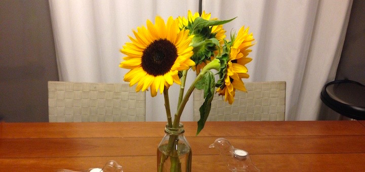 Gratuitous photo of the sunflowers because I love them! They are, after all, my favorite flower.