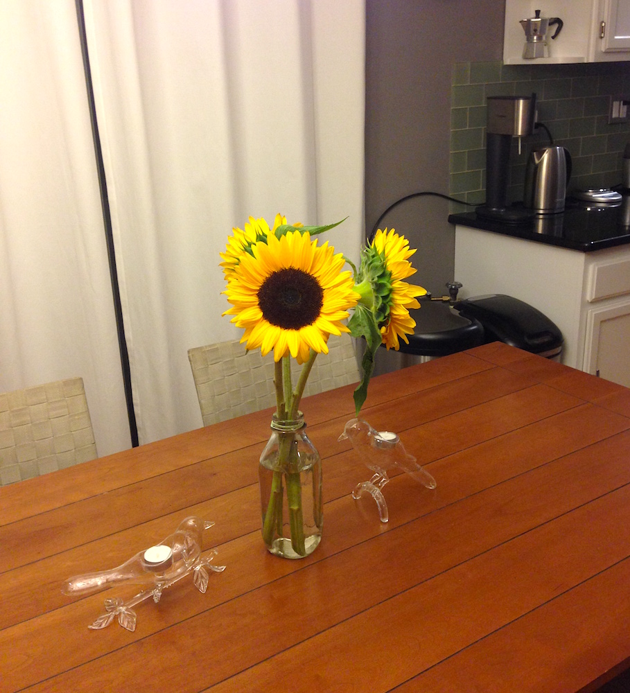 Gorgeous sunflowers our friends gave us in thanks for watering their garden