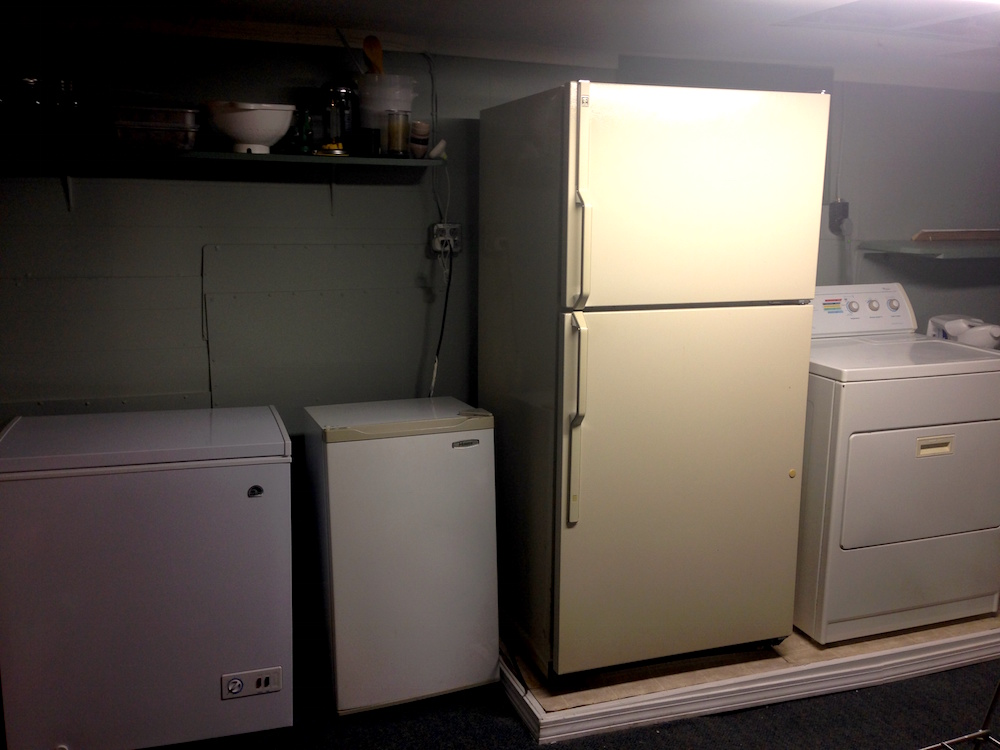 The current freezer, minifridge, old fridge line-up (w/photo bomb by our dryer)