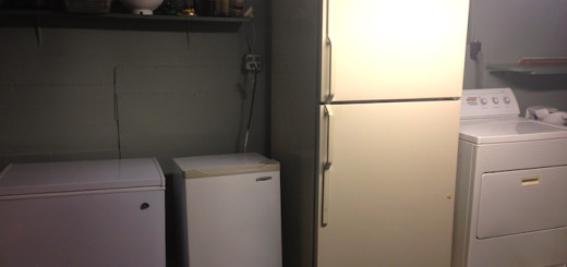 BasementFridge_cover