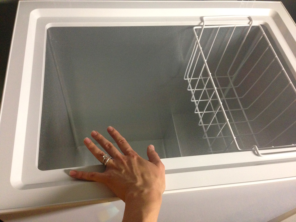 Me as hand model w/chest freezer