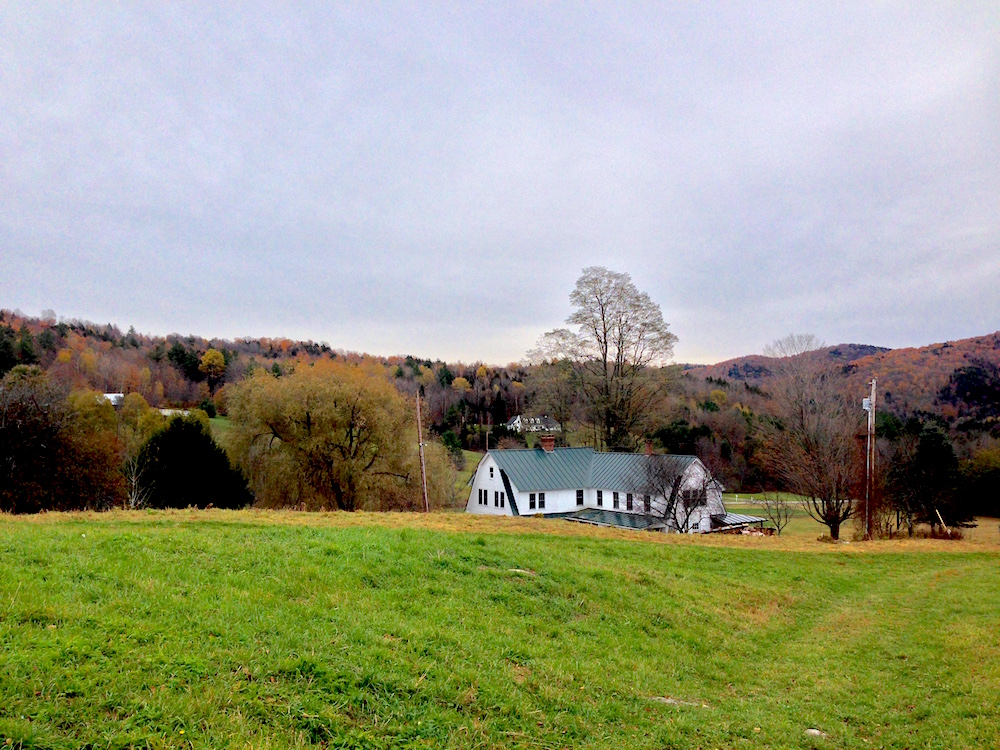 A view of Stitchdown Farm from their upper pasture
