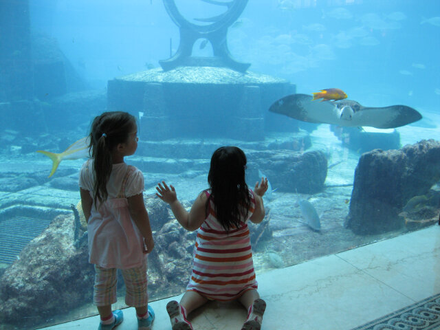 My daughters observing the aquatic life in the Bahamas