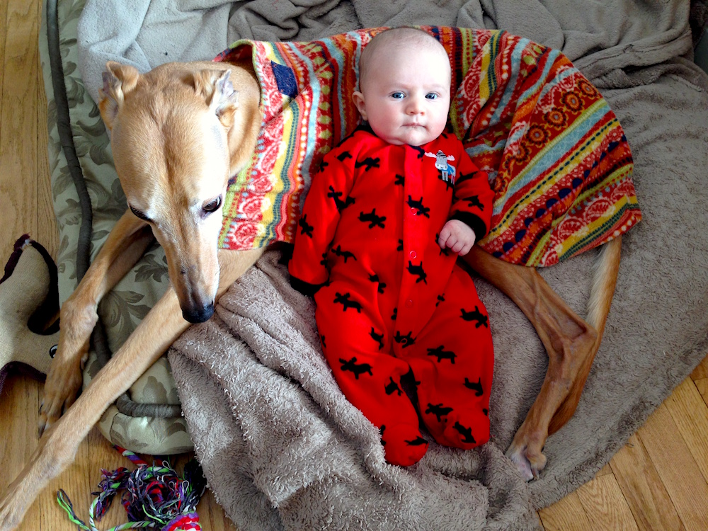 Frugal Hound & Babywoods: two ladies who are decidedly not spenders
