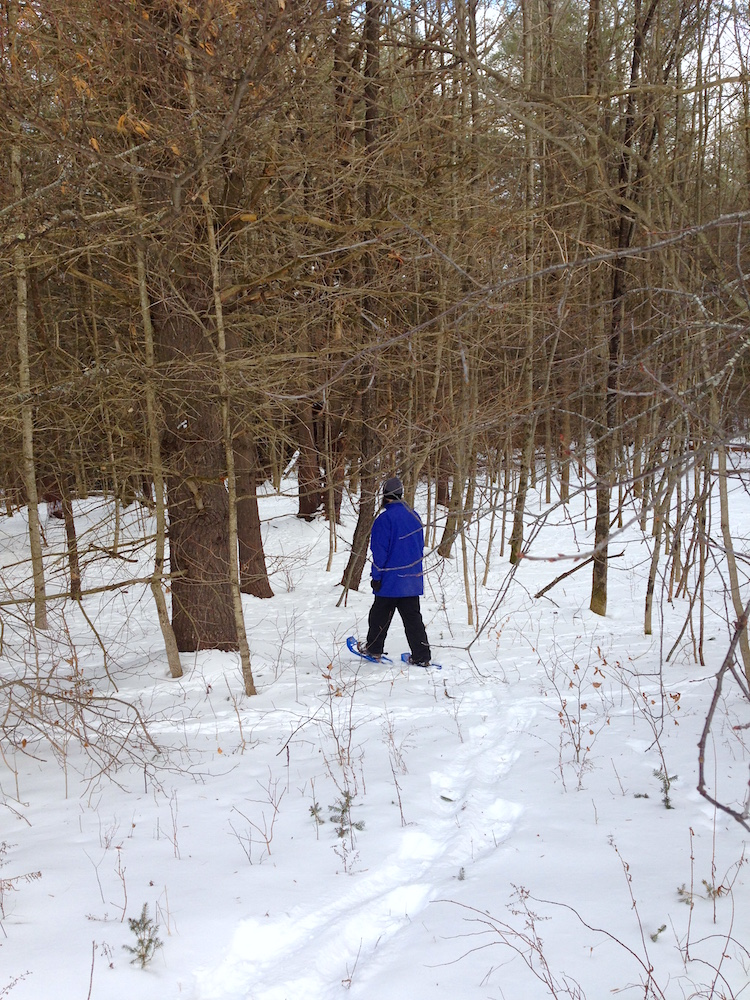 Mr. FW snowshoeing through the woods