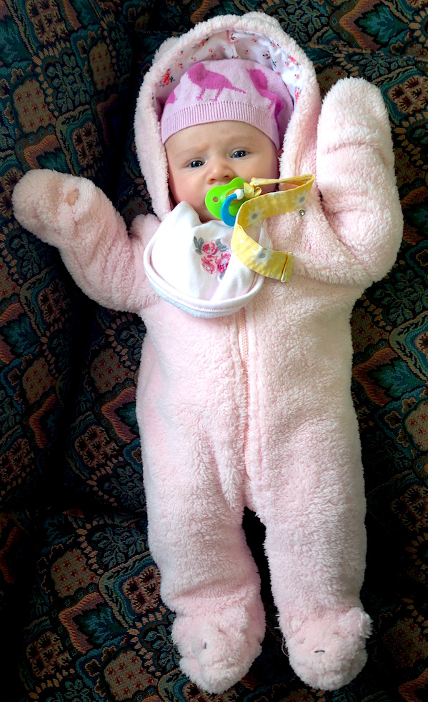 Gratuitous photo of Babywoods in a snowsuit. It has nothing to do with this post, but she looks hilarious.
