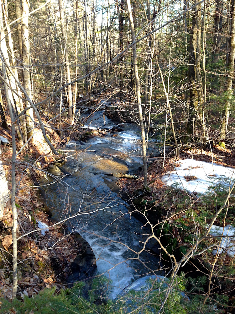 A stream on our land