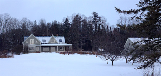 Homestead_snow_cover_winter