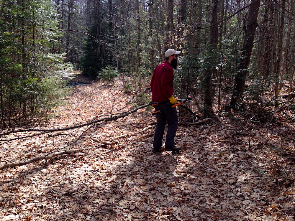 Mr. FW clearing brush on one of our trails