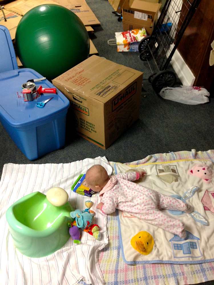 "Babywoods enjoying her ""baby safe zone"" in the basement"