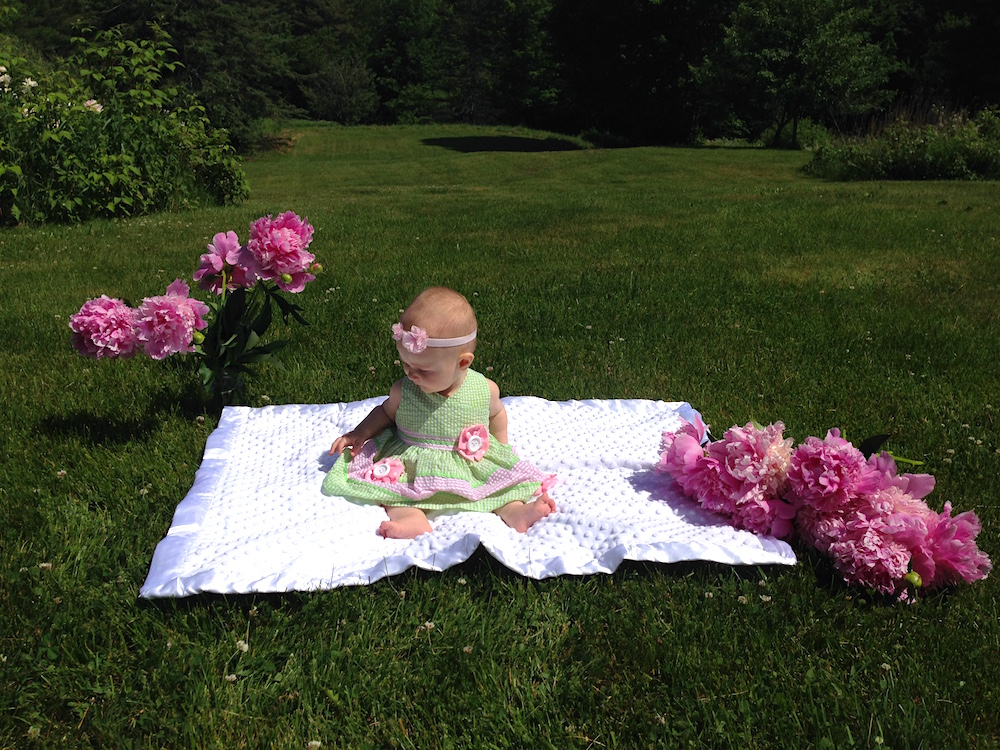 Babywoods in the yard with some of our peony harvest