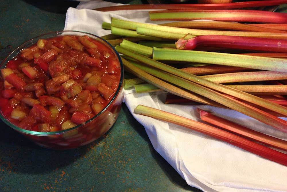 One of my rhubarb creations: compote! To be given as gifts I think!