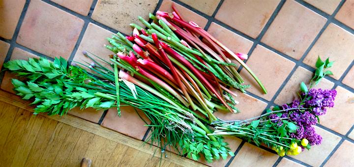 My latest haul: celery, flowers, asparagus, green garlic, and of course rhubarb!