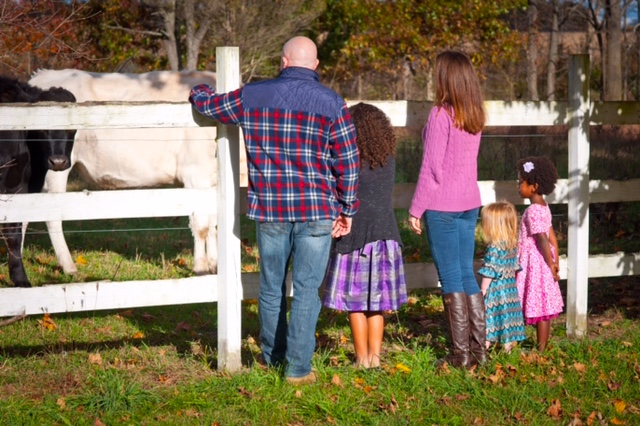 The family with their cows