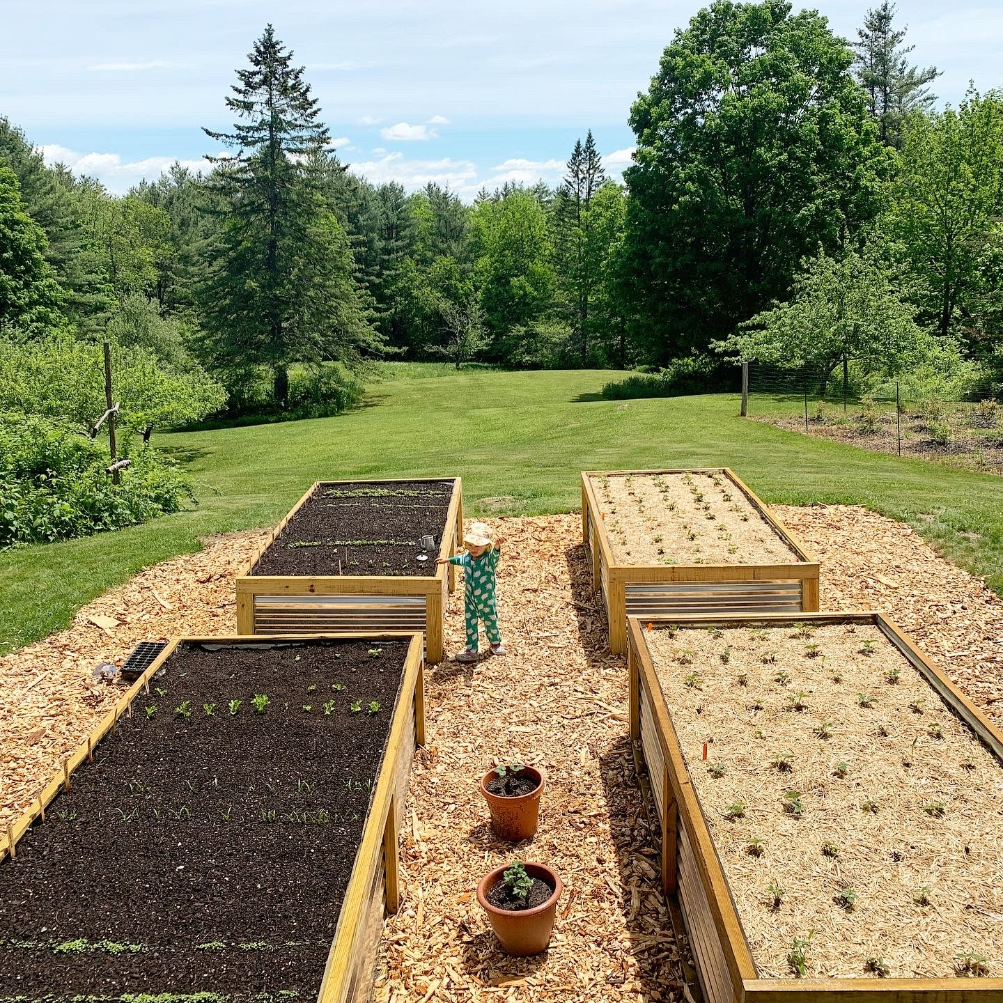 This Month On The Homestead: The Full Garden Rundown Including Building Raised Beds 5