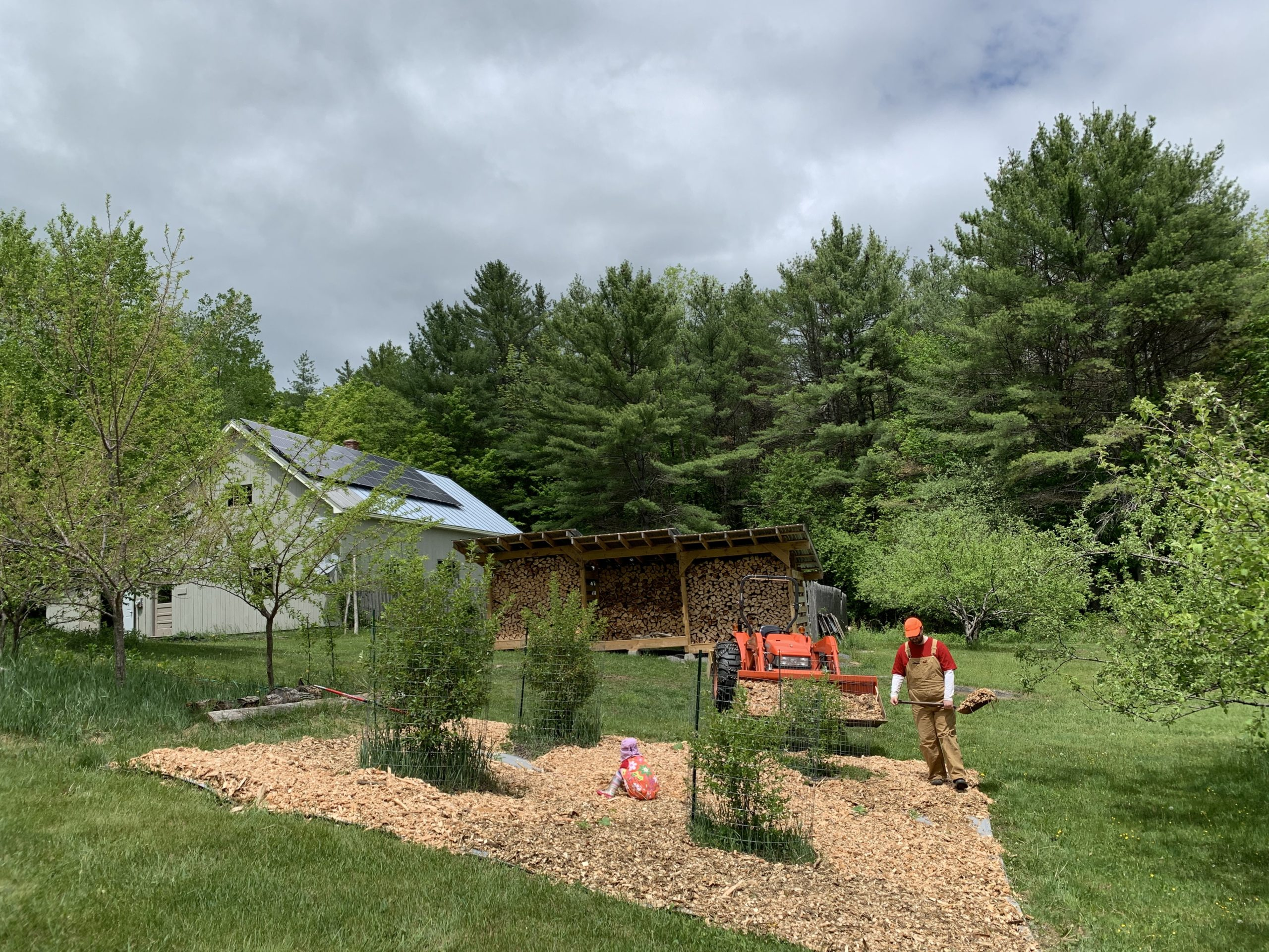 This Month On The Homestead: The Full Garden Rundown Including Building Raised Beds 6