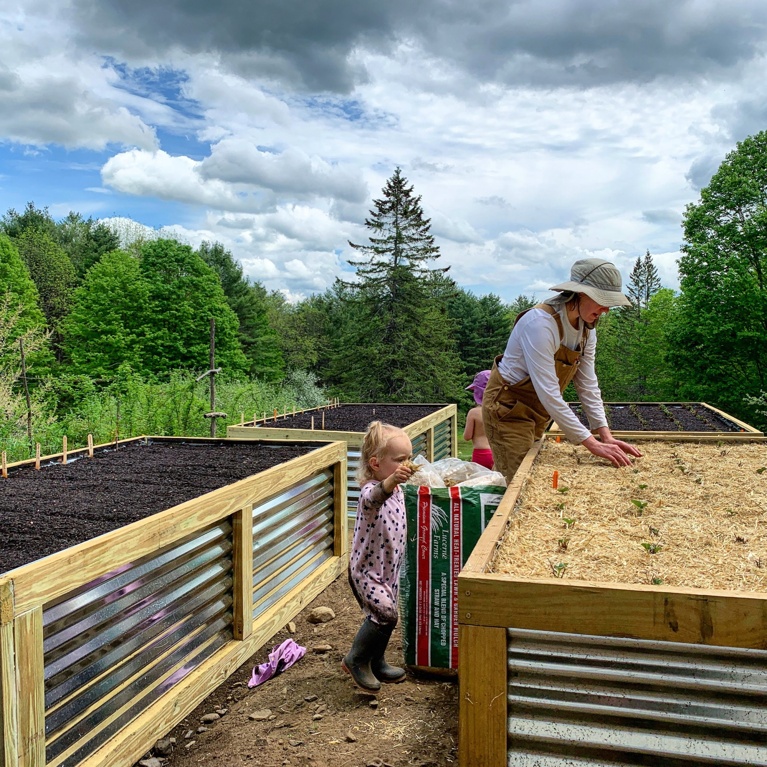 This Month On The Homestead: The Full Garden Rundown Including Building Raised Beds 12