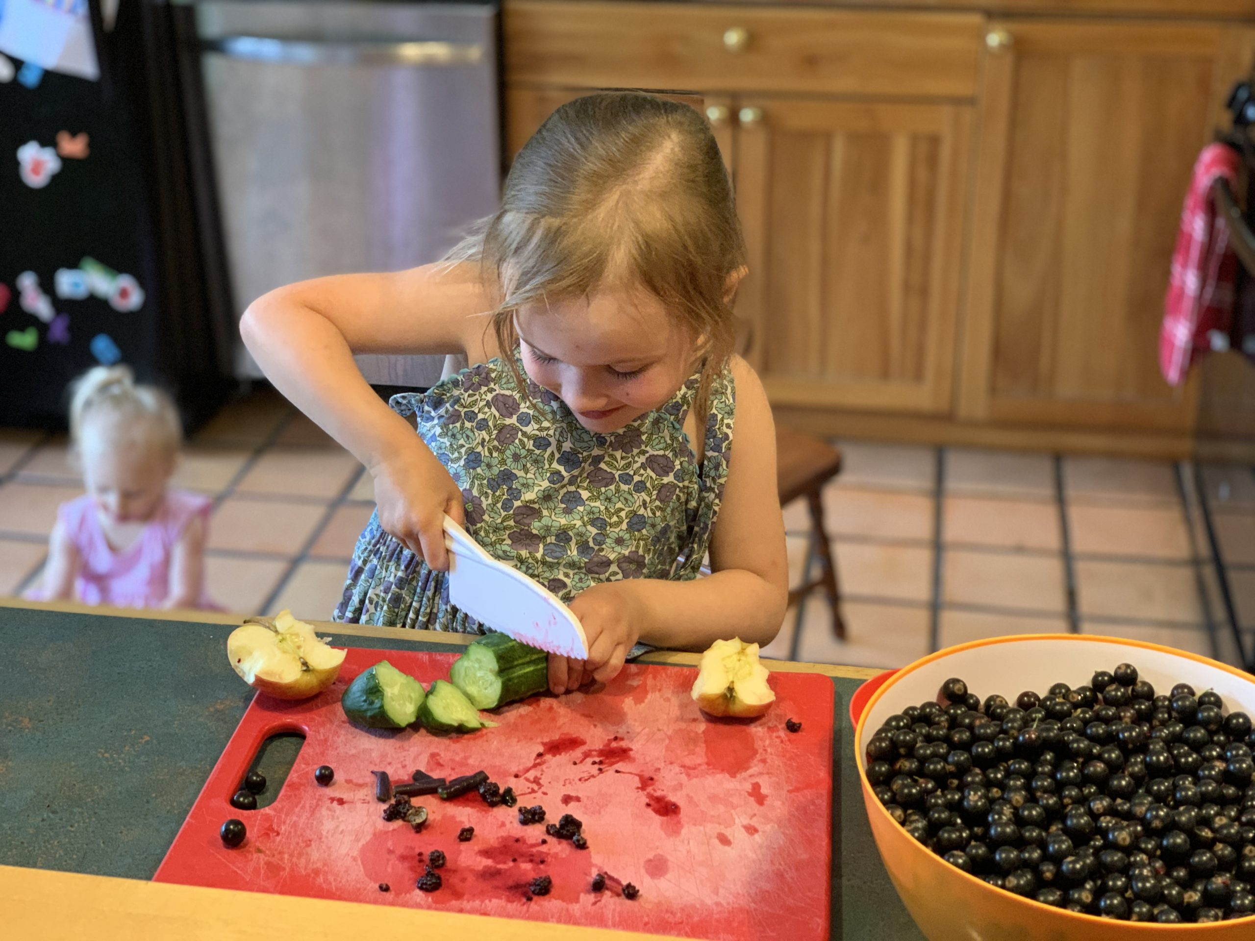 This Month On The Homestead: In The Garden, Picking Berries, Preserving Beans 4