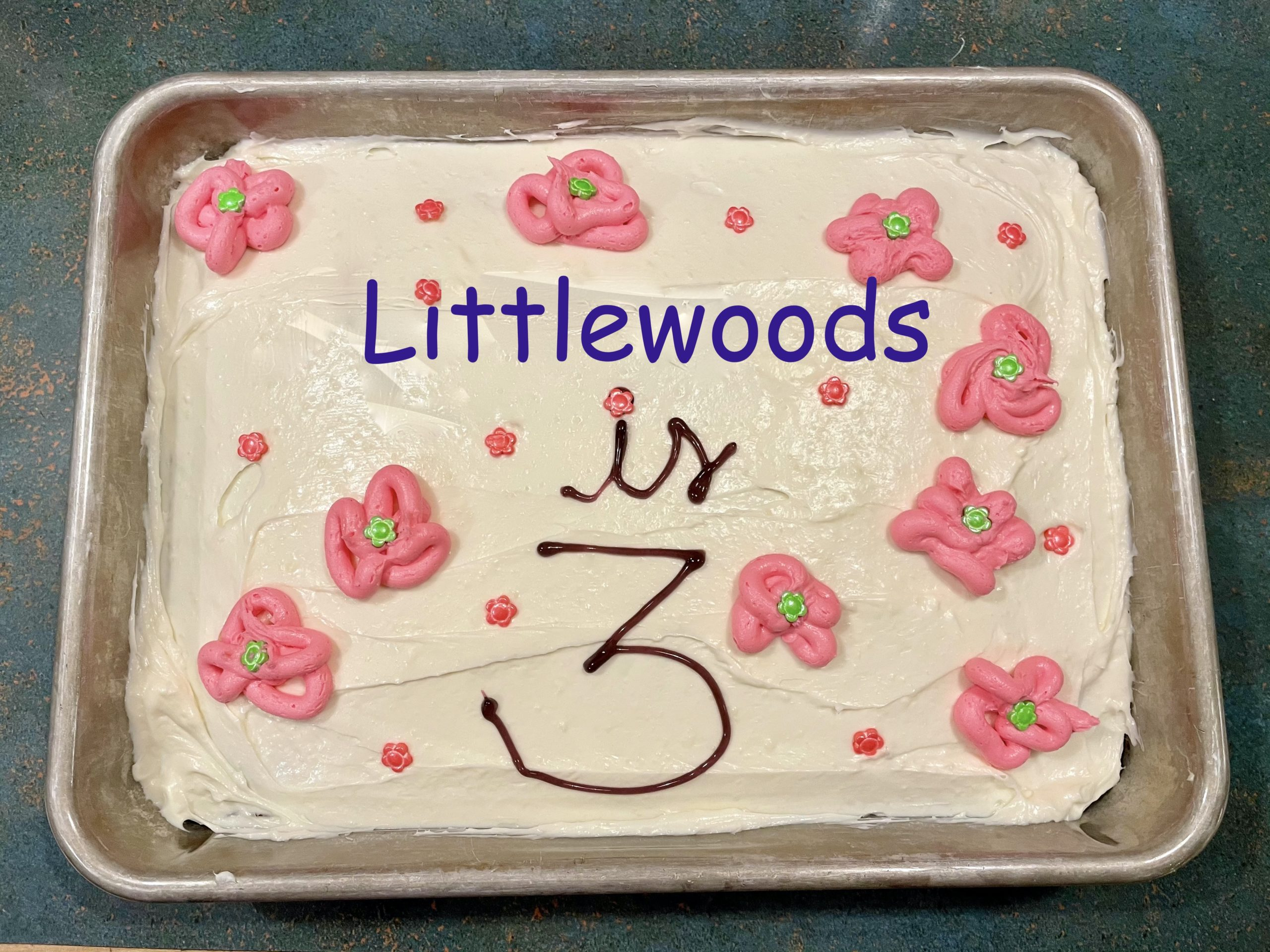 Littlewoods' 3rd Birthday and Other February 2021 Expenses - Frugalwoods